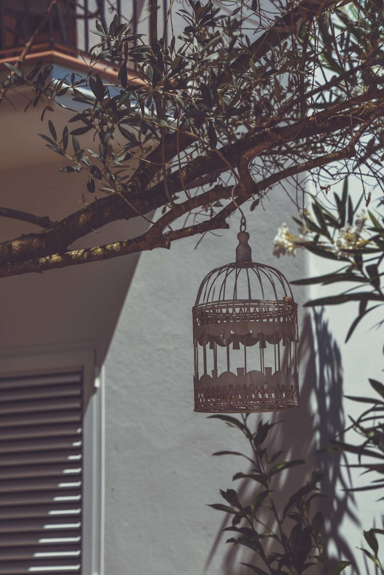 villa-Ibiza-19