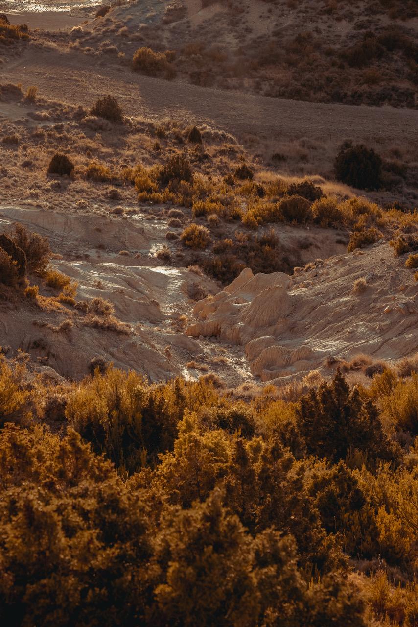 DSC_6228GD-desert-jour-2-300dpi