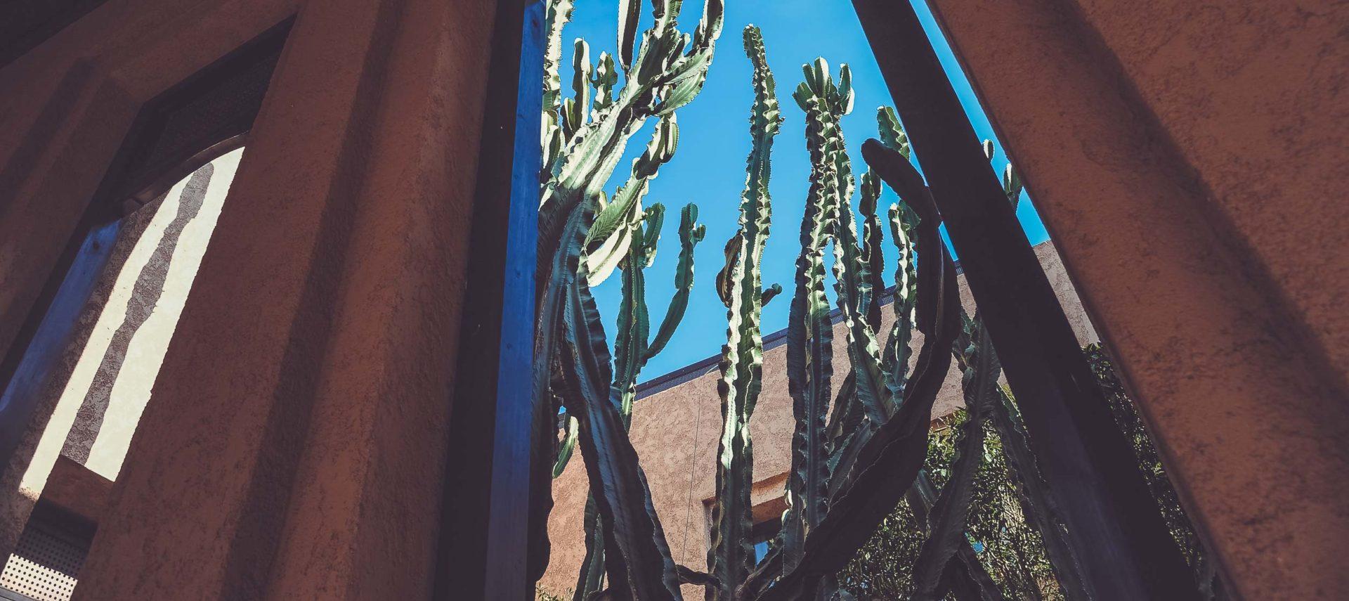 royal-palm-marrakech-107